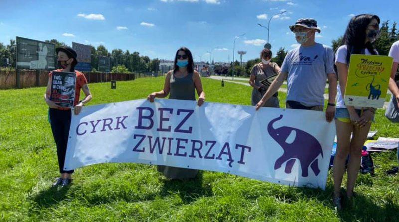 Protestowali przeciwko cierpieniom zwierząt w cyrkach